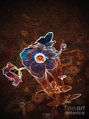 Digital Art - Photographic Changed Flowers 1 by Lance Sheridan-Peel