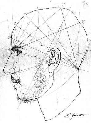 Psychology Drawing - Phrenological Study by French School