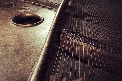 Photograph - Piano, Inside The Music by Paul Wilford