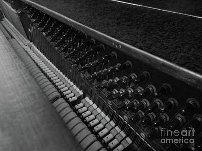 Photograph - Piano Strings  by Doc Braham