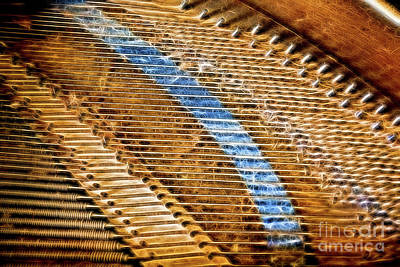 Piano Photograph - Piano Strings by Sharon McConnell
