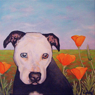 Painting - Pibble In The Poppies by Lindi Levison
