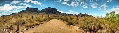 Picacho Peak State Park Panorama Art Print