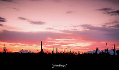 Digital Art - Picacho Sunset by Steve Kelley