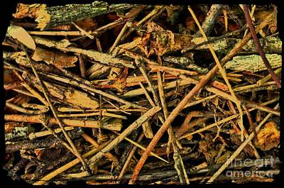 Photograph - Pick Up Sticks IIi by Debbie Portwood