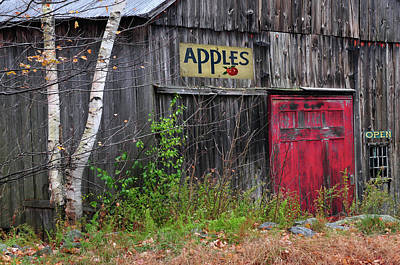 Photograph - Apples Are Red by Expressive Landscapes Fine Art Photography by Thom