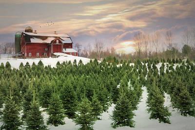 Barn Digital Art - Pick Your Tree by Lori Deiter