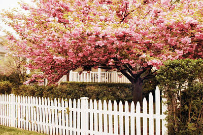Picket Fence Charm Art Print