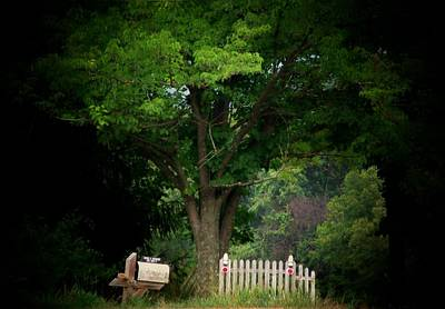 Picket Fence Mailbox Art Print by Michael L Kimble