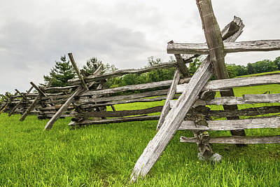 Photograph - Picket Fence by SR Green