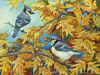 Bluejay Painting - Picking Acorns - Blue Jay by Susan Zabel