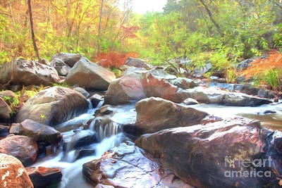 Photograph - Pickle Creek Hawn State Park by Peggy Franz