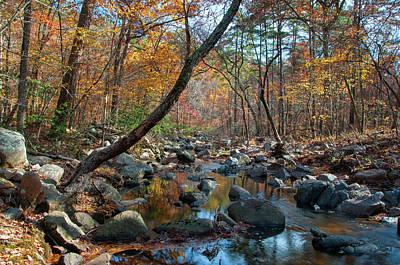 Photograph - Pickle Creek by Steve Stuller