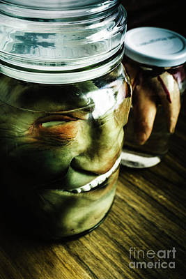 Skull Photograph - Pickled Monsters by Jorgo Photography - Wall Art Gallery