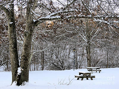 Photograph - Picnic In The Snow by Janice Drew
