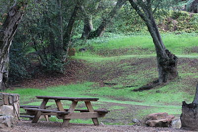 Photograph - Picnic In The Woods  by Christy Pooschke