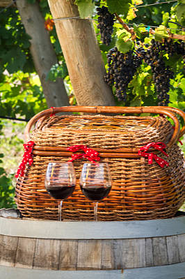 Photograph - Picnic In Vineyard by Teri Virbickis