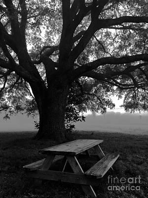 Photograph - Picnic by Robin Lewis