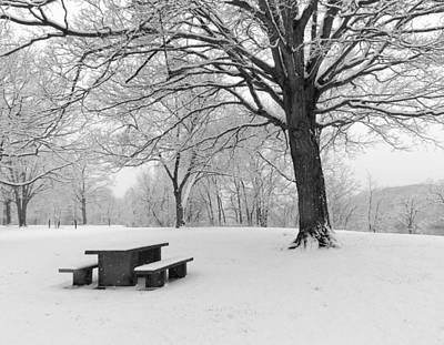 Wall Art - Photograph - Picnic Table by Robert Papps