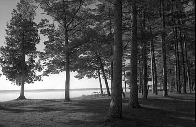 Picnic Table View-newport State Park Art Print by Stephen Mack