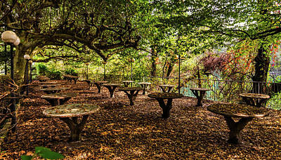 Photograph - Picnic Tables In The Autumn by Alexandre Rotenberg