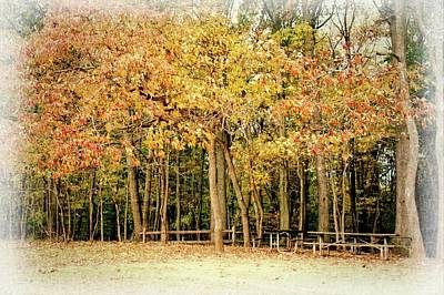 Photograph - Picnic Tables Under The Autumn Trees by Angie Tirado