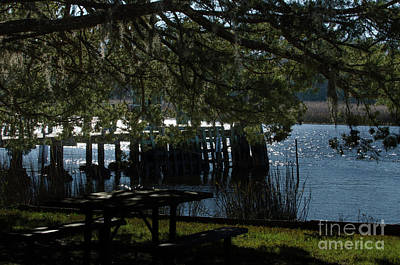 Photograph - Picnic Time In Mccellanville by Dale Powell