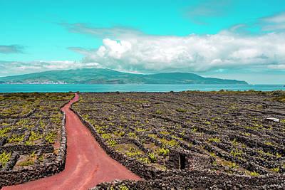Photograph - Pico Island Vineyard 01 by Edgar Laureano