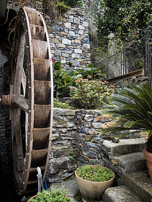 Waterwheel Photograph - Pictueresque Waterwheel In Cinqueterre Garden by David Smith