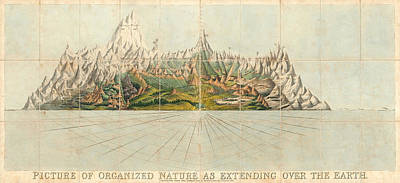 Drawings Royalty Free Images - Picture of Organized Nature as Extending over the Earth - Geological Illustration - Old Atlas Royalty-Free Image by Studio Grafiikka
