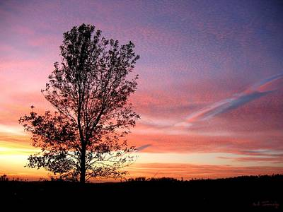 Art Print featuring the photograph Picture Perfect Sunset 6014 by Maciek Froncisz