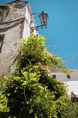 Photograph - Picturesque Ronda by Jenny Rainbow