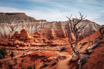 Photograph - Picturesque Trail Through Kodachrome Basin State Park by Daniela Constantinescu