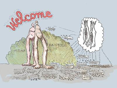Bacteria Drawing - Piece Of Meat by R  Allen Swezey