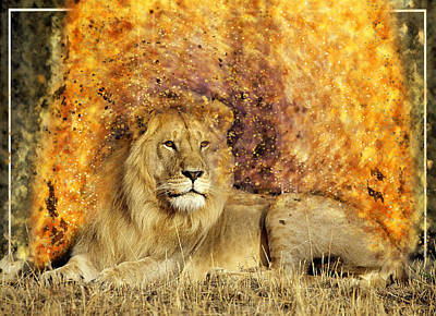 Photograph - Pieces Of A Lion by Ericamaxine Price