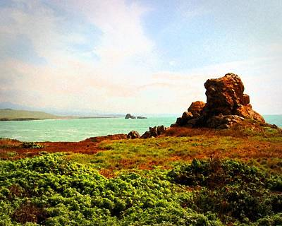 Art Print featuring the photograph Piedras Blancas 3 by Timothy Bulone