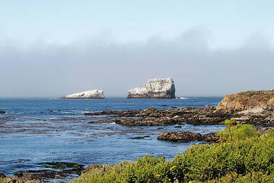 Photograph - Piedras Blancas by Art Block Collections