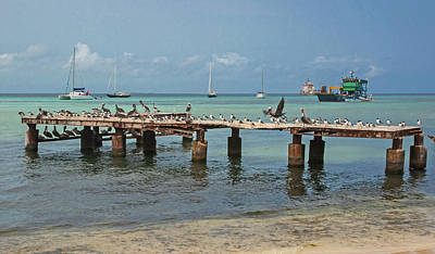 Photograph - Pier For Birds by Jean-Luc Baron