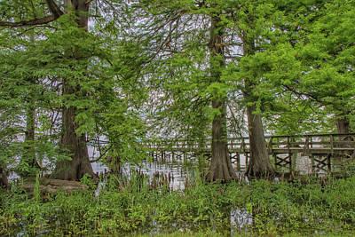 Photograph - Pier On Reelfoot Lake by Robert Hebert