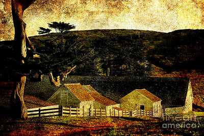 Wings Domain Photograph - Pierce Point Ranch 18 . Texture by Wingsdomain Art and Photography