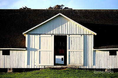Photograph - Pierce Point Ranch 9 by Wingsdomain Art and Photography