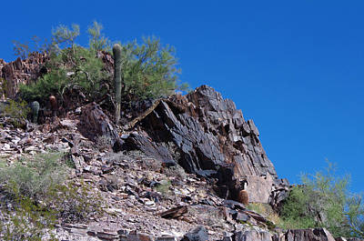 Photograph - Piestewa Peak by Greg Graham