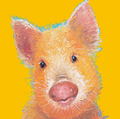Pig Painting - Pig Art On Yellow Background by Jan Matson
