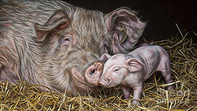 Pig Mixed Media - Pig Collection by Marvin Blaine
