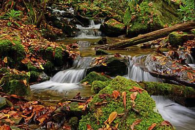 Pigeon Creek Cascades Art Print