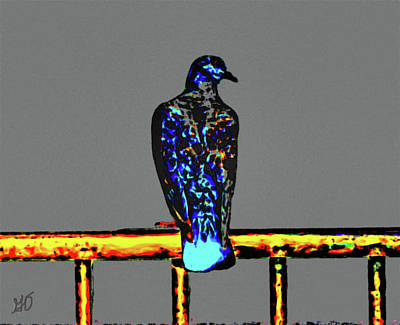 Photograph - Pigeon On A Rail by Gina O'Brien