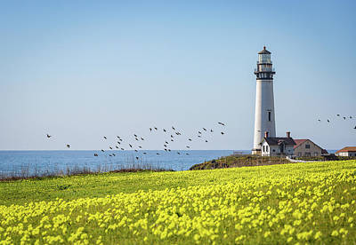 Photograph - Pigeon Point Light Station Historic Park by Donnie Whitaker
