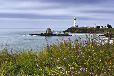 Photograph - Pigeon Point Lighthouse 1 by Paul Riedinger