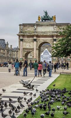 Arc De Triomphe Du Carrousel Wall Art - Photograph - Pigeons Flocking At Arc Du Carrousel, Louvre by Liesl Walsh