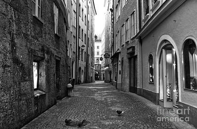 Photograph - Pigeons On The Street In Salzburg by John Rizzuto